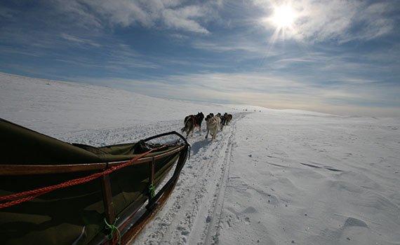 Voigt travel sneeuw aanbieding