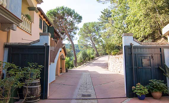 thumb-header-country-agriturismo-flydrive